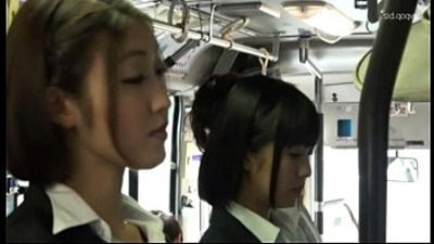 Asian lesmancreviceans in bus